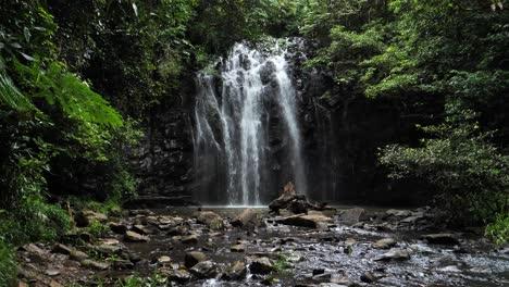 Toma-De-Establecimiento-De-Ellinjaa-Falls-En-Millaa-Millaa-Queensland-Australia