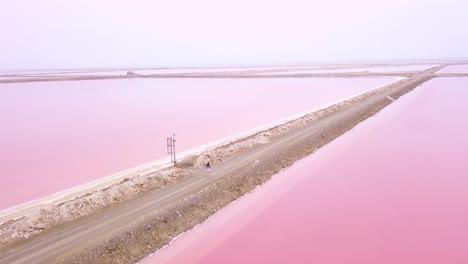 Increíble-Antena-Sobre-Una-Mujer-Trotando-O-Corriendo-En-Una-Colorida-Región-Rosada-Del-Salar-En-Namibia-África-1