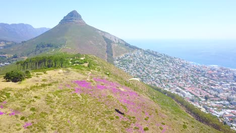 Drone-aerial-over-paragliding-and-paragliders-with-the-downtown-city-of-Cape-Town-South-Africa-in-background-1