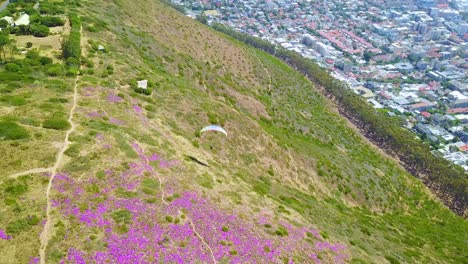 Drone-aerial-over-paragliding-and-paragliders-with-the-downtown-city-of-Cape-Town-South-Africa-in-background-3