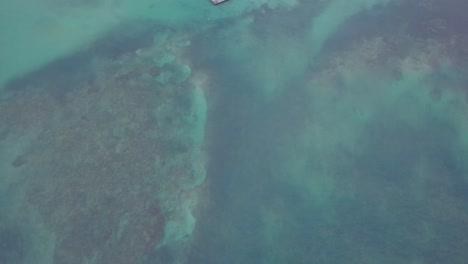 Inclinación-De-La-Antena-De-Un-Centro-De-Nado-Con-Delfines-En-Punta-Cana-En-La-República-Dominicana