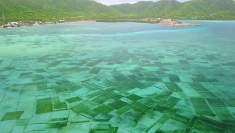 Aerial-of-undersea-aquaculture-seaweed-farm-near-Nusa-Dua-on-the-island-of-Bali-Indonesia
