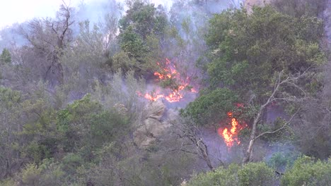 A-Brushfire-In-The-Hills-Of-Malibu-Burns-Out-Of-Control-In-The-Woolsey-Fire