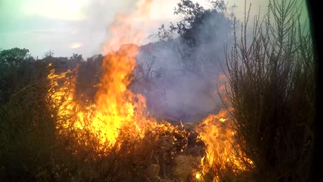 A-Brush-Fire-Burns-Very-Close-To-A-Remote-Sensing-Camera-On-A-Hillside-In-Southern-California-During-The-Cave-Fire-In-Santa-Barbara
