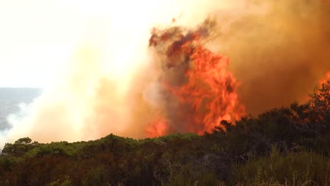 A-Vast-Scary-Fast-Moving-Wildifre-Burns-Brush-On-The-Hillsides-Of-Southern-California-During-The-Cave-Fire-In-Santa-Barbara
