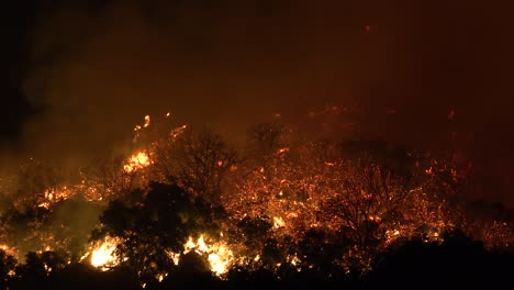 Night-Footage-As-The-Cave-Fire-Near-Santa-Barbara-California-Burns-Vast-Acres-Of-Southern-California-Hillsides-2
