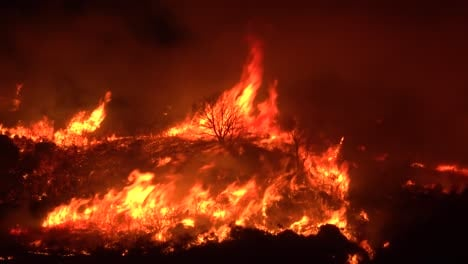 Huge-Flames-Rise-At-Night-As-The-Cave-Fire-Near-Santa-Barbara-California-Burns-Vast-Acres-Of-Southern-California-Hillsides-1