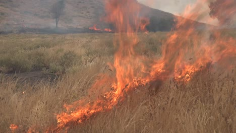 A-Controlled-Prescribed-Wildfire-Is-Lit-By-A-Firefighter-In-A-Wilderness-Area-In-Santa-Barbara-County-California