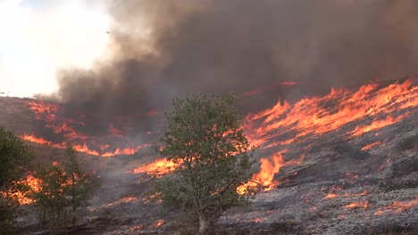 A-Wildfire-Brush-Fire-Burns-In-The-Hills-Of-Southern-California