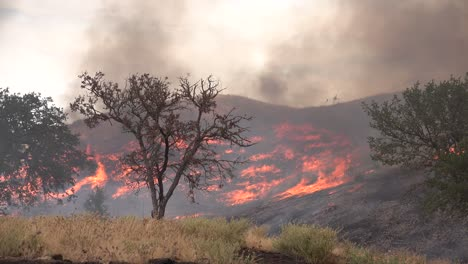 A-Wildfire-Brush-Fire-Burns-In-The-Hills-Of-Southern-California-2