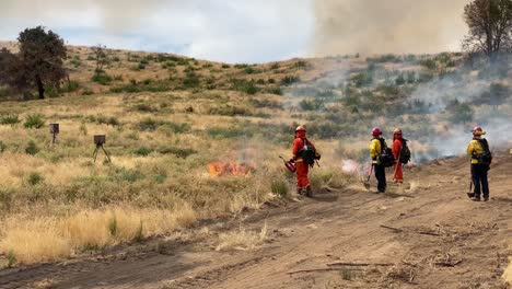 A-Controlled-Prescribed-Wildfire-Is-Lit-By-A-Firefighter-In-A-Wilderness-Area-In-Santa-Barbara-County-California-2