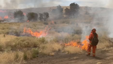 Un-Bombero-Enciende-Un-Incendio-Forestal-Prescrito-Controlado-En-Un-área-Silvestre-En-El-Condado-De-Santa-Bárbara-California-3