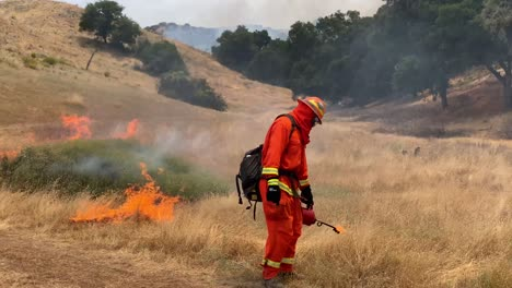 A-Controlled-Prescribed-Wildfire-Is-Lit-By-A-Firefighter-In-A-Wilderness-Area-In-Santa-Barbara-County-California-4