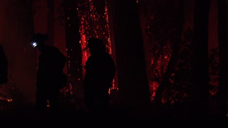 Night-Firefighters-Fire-Fighting-During-Lightning-Complex-Fire-In-Santa-Cruz-Mountains-California-1