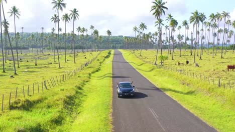 Tourists-Lean-Out-Of-A-Car-And-Have-A-Good-Time-Driving-On-A-Road-In-Vanuatu-Melanesia-Pacific-Islands