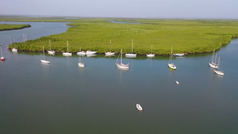 Aerial-Over-Vast-Mangrove-Swamps-And-Boats-On-The-Gambia-River-The-Gambia-West-Africa