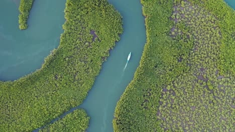Top-Down-Aerial-Over-Small-Boat-Moving-Along-The-Gambia-River-In-West-Africa