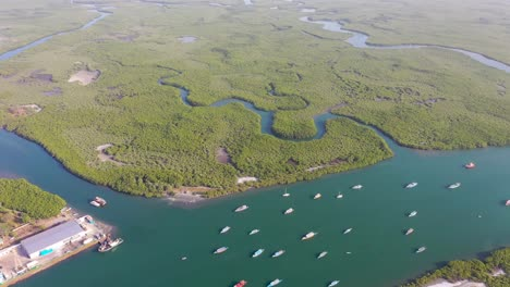 Aerial-Over-Vast-Mangrove-Swamps-On-The-Gambia-River-The-Gambia-West-Africa-2