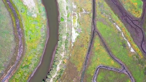 Antena-Hacia-Abajo-Zona-De-Humedales-Pantanosos-Cerca-De-Carpinteria-Santa-Bárbara-California-1