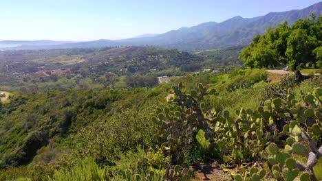 Aerial-Over-Cactus-Reveals-Carpinteria-Montecito-California-And-Establishing-Santa-Barbara-Coastline-Below