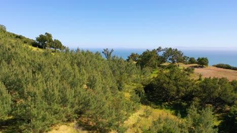 Vista-Aérea-Over-Hills-Reveals-Carpinteria-California-And-Establishing-Santa-Barbara-Coastline-Below