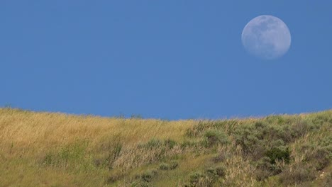 A-Full-Moon-Rises-Over-A-Hillside-In-California-With-Grass-Blowing-In-This-Beautiful-Nature-Shot-2