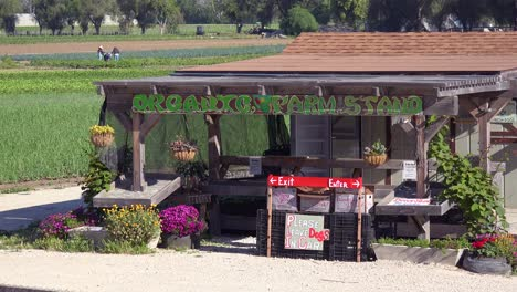 Small-Organic-Farm-Stand-Sells-Nutritious-Locally-Grown-Fruits-And-Vegetables-In-The-Santa-Ynez-Valley-Santa-Barbara-California