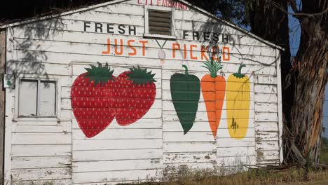 A-Farm-Stand-Advertises-Just-Picked-Fresh-Organic-Fruit-And-Vegetables-Near-Santa-Maria-California