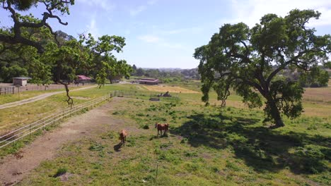 Beautiful-Aerial-Over-A-Horse-Farm-Or-Ranch-In-Santa-Barbara-County-California-2