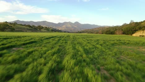 Beautiful-Aerial-Over-Grassland-And-Remote-Hills-And-Mountains-In-Santa-Barbara-County-Central-California-3