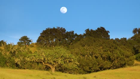A-Full-Moon-Rises-Over-A-Hillside-In-Central-California-In-This-Beautiful-Nature-Shot-1