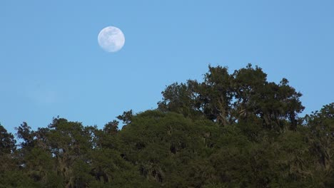 A-Full-Moon-Rises-Over-A-Hillside-In-Central-California-In-This-Beautiful-Nature-Shot-3