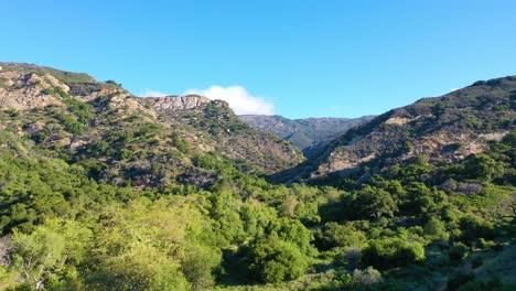 Aerial-Over-A-Remote-Canyon-Arroyo-Hondo-In-Gaviota-Santa-Barbara-County-California