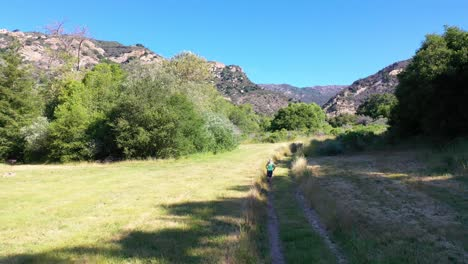 Aerial-Over-A-Woman-Jogging-Through-The-Wilderness-In-The-Santa-Ynez-Mountains-In-Santa-Barbara-County-California-1