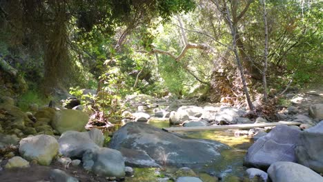 Slow-Aerial-Through-A-Green-Forest-Stream-Or-River-Environment-Suggests-Wilderness-Santa-Ynez-Mountains-California