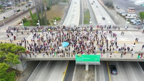 Alta-Antena-A-Través-De-Grandes-Multitudes-En-El-Viaducto-De-La-Autopista-Negra-Vidas-Importan-Protesta-De-Blm-En-Ventura-California-1
