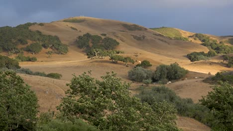 Beautiful-Time-Lapse-Of-Oak-Trees-And-Grasslands-Of-Central-California-San-Luis-Obispo-With-Hills-And-Mountains