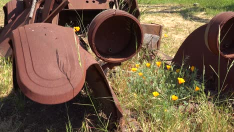 An-Old-Car-Sits-Abandoned-And-Rusting-On-A-Ranch-In-Santa-Ynez-Mountains-Of-California-3