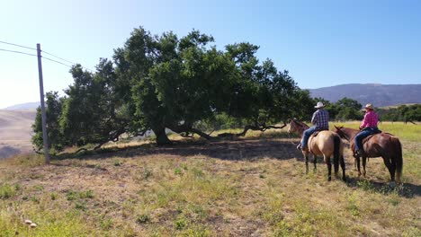 Aerial-Retired-Couple-Riding-Horses-At-Mountaintop-Oak-Trees-On-A-Ranch-Near-Santa-Barbara-California-1