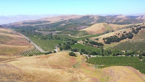 Vista-Aérea-Over-An-Avocado-Farm-Or-Ranch-Property-In-The-Santa-Ynez-Mountains-Of-Santa-Barbara-California-1