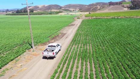 Buena-Antena-De-Una-Camioneta-Conduciendo-A-Través-De-Campos-Agrícolas-En-Lompoc-Condado-De-Santa-Bárbara-California-1