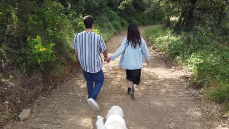 A-Man-And-Woman-Walk-Hand-In-Hand-With-Their-Dog-In-A-Forest-In-Slow-Motion