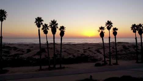 Beautiful-Aerial-Through-Palm-Trees-At-Sunset-At-A-Southern-California-Beach