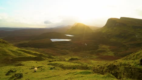 Sheep-are-seen-grazing-on-the-Quiraing-landslip-on-the-Isle-of-Skye-in-Scotland-2