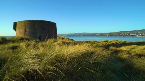 Tall-grass-and-architecture-is-seen-by-the-water-at-Magillagan-Point-in-Londonderry-Northern-Ireland