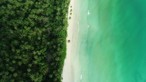 A-Birds-eye-view-Shows-The-Coastline-Of-Madwaer-Beach-In-Maluku-Indonesia