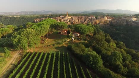 An-Aerial-View-Shows-Crops-Being-Grown-Outside-Pitigliano-Italy