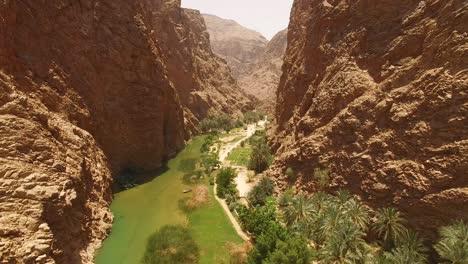 Una-Vista-Aérea-Muestra-Una-Vía-Fluvial-Y-Vegetación-Entre-Cañones-En-Wadi-Shab-Omán