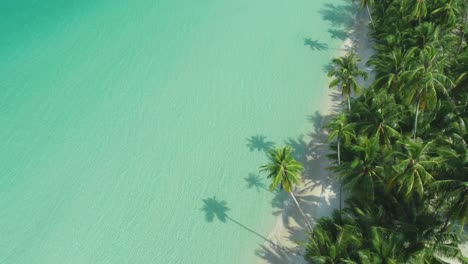 An-Aerial-View-Shows-Waves-Lapping-A-Palmtree-Lined-Beach-In-Ko-Kut-Thailand