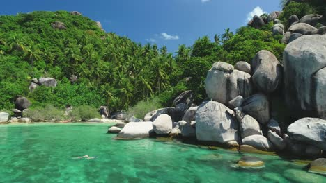 Palm-Trees-Are-Seen-Growing-On-A-Rocky-Coastline-Of-Ko-Tao-Thailand